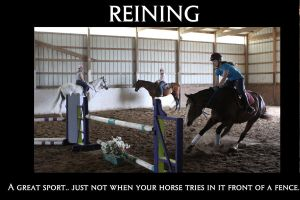Motivational Poster - Reining by Animal-Angels