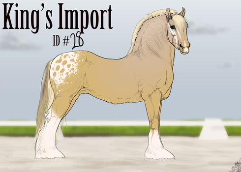 #28 Faime King's Import by emmy1320