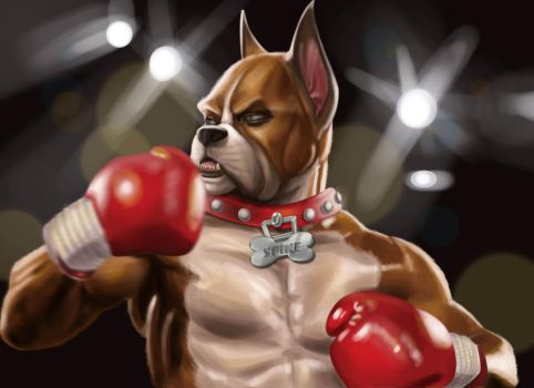 The Boxer by traydaripper