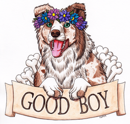 Good Boy - Border Collie by RHCP-Cream