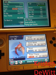 Shiny Talonflame (See description) by LocalAlly