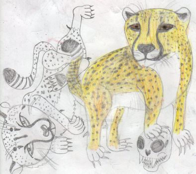 Cheetah frolics by S-T-A-N-Z-I-E