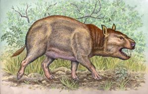 Achaenodon robustus by WillemSvdMerwe