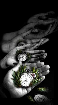Letting go of time... by feenixfly