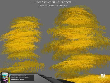 MA-Brushes Realistic Photoshop Brushes - Fan Brush by MichaelAdamidisArt