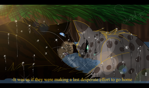 Final Efforts (Warrior Cats) by WarriorCat3042