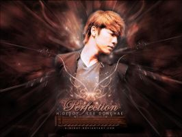 Perfection Wallpaper ver. by H-Diddy