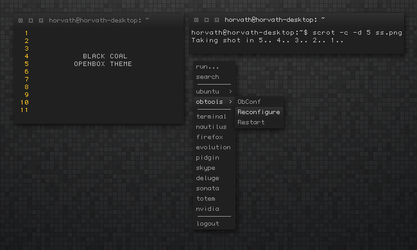 Black Coal OpenBOX Theme by Jaanos