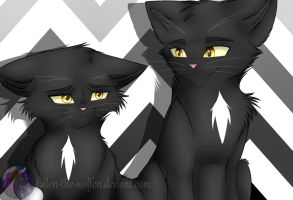Adult!Ravenpaw and Young!Ravenpaw by Fallen-the-Wolfen