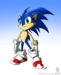 Sonic the Hedgehog by jollyjack