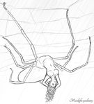 Day Six: Spider Girl by Moonlight-pendent13