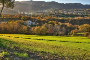 My land - HDR by yoctox