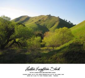 Green Hills 4 by HKstock