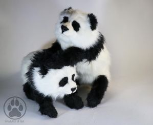 SOLD 4 Month Old Panda Cubs artdolls by CreaturesofNat
