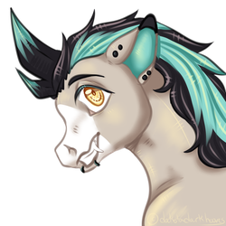 Nightlore Headshot by dakotadarkhooves