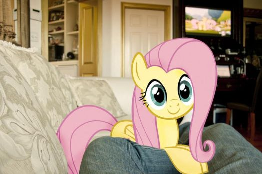 Fluttershy's on my couch by ILOVEmyIpod098