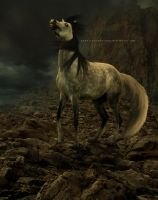 Wolf horse. by Kennelwood