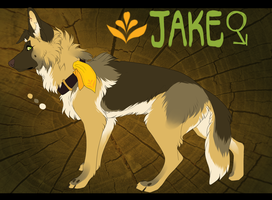 Jake by DoctorCritical