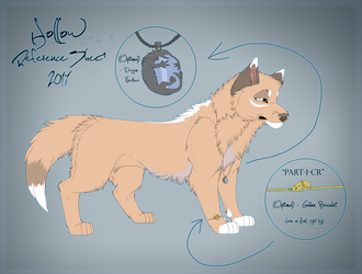 .: Hollow Reference Sheet 2017 :. by MorningAfterWolf