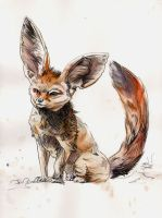 Fennec Fox Ink and Watercolor by justinprokowich