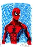 Spider-Man by Penzoom