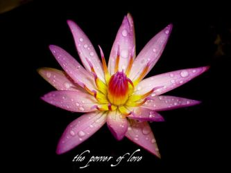 The Power of Love. by Talk3talk4