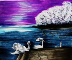 Swans in winter by NanakoHarrison