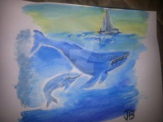 Whales by Scrubs3