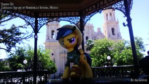 Daring Do en Hermosillo by Catsofdeath