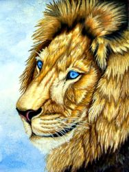Lionsong by Lionsong