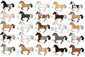 Equine Mystery Adoptables OPEN by SilverBrooke-Stables