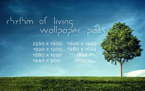 Rhythm of Living WP pack by solefield