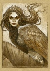 The harpy, Marta by BohemianWeasel