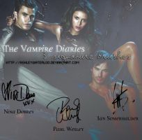 3 Signature Brushes from TVD by AshleyWaterloo