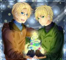 APH - A gift from us by MaidenKonan27