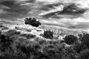 Middle of Nowhere by vahid-naziri
