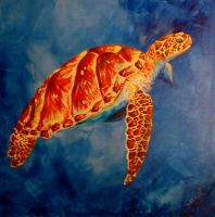 Acrylic turtle by DreamingMerchant