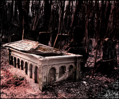 Tomb by AKLP