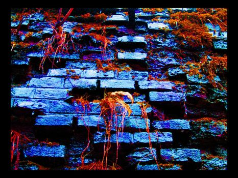 Wet coloured wall. by excitement-catcher