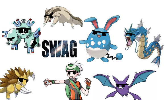 Marriland Nuzlocke Swag by dannyweat123