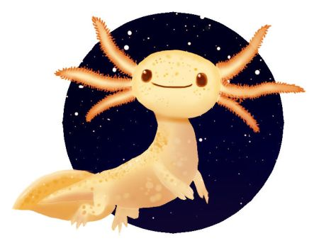 Little axolotl by momsspagheet