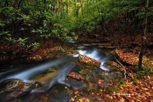 Around The Bend by TRBPhotographyLLC