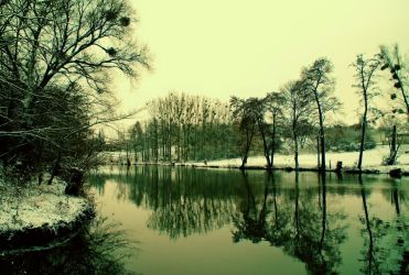 Winter reflections by LiveInPix