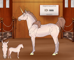 4444 Admin Import by EquusBallatorSociety