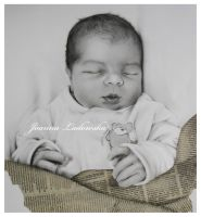 One day old by Ladowska