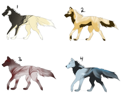 Wolf Adopts: Point and USD by Whitelupine
