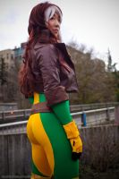 ECCC 2013: Rogue I by Weatherstone