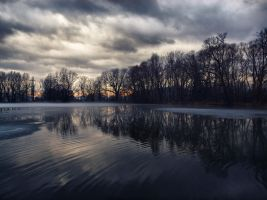 Dark pond 4 by FrantisekSpurny