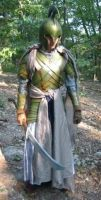 Lord of the Rings 2nd Age Elf Armor by Jathoris
