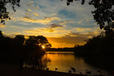 Prospect Park Sunset by adenisej25